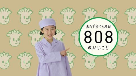 988e602b-s
