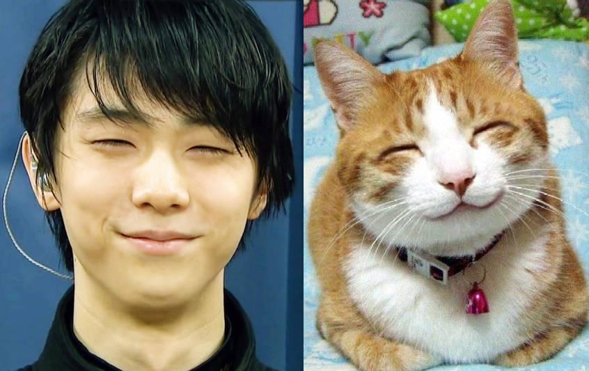 羽生結弦の笑顔は猫に似てる?ほっこりする可愛い画像に癒される