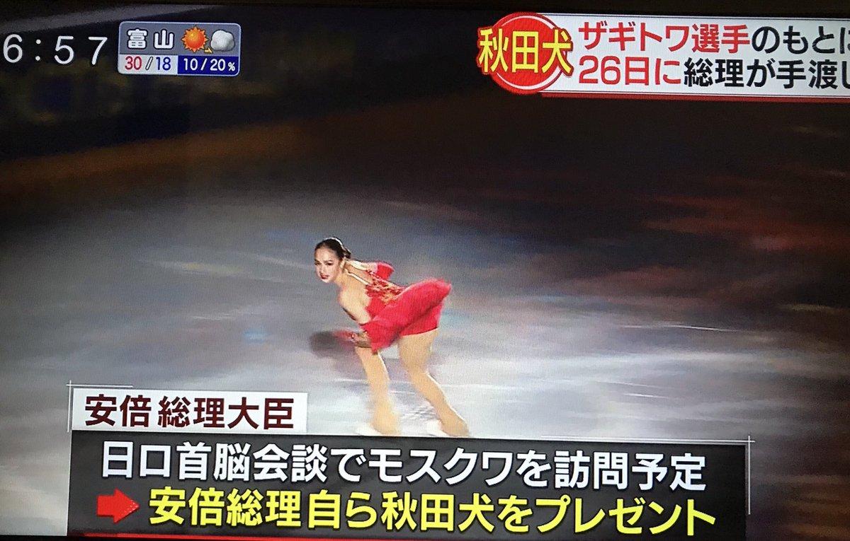 ザギトワ選手の秋田犬 安倍総理が26日手渡しへ!