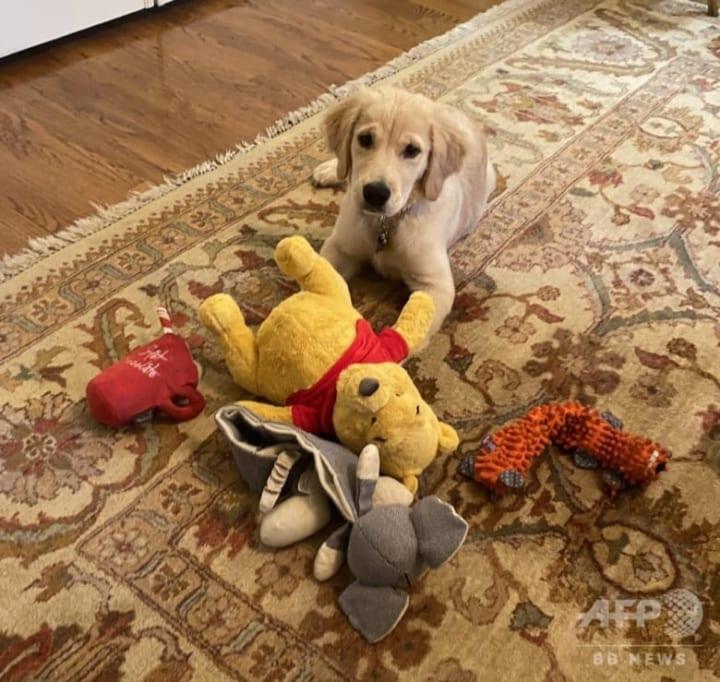 米ポンペオ氏「くまのプーさん」の写真が話題!  …愛犬も中国批判に一役 …