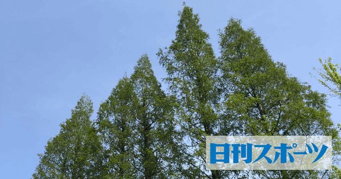 入国制限でジュニアGP横浜大会中止!
