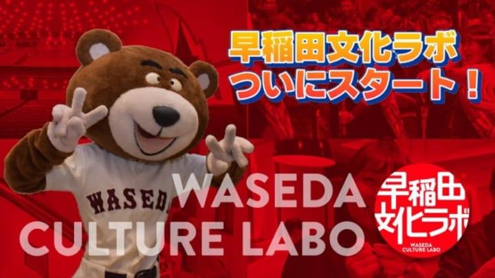 イラッとくるよねこの熊w!  …「もっとちゃんとしたの作る気はないんだろうかw」…