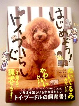 「はじめよう!トイプーぐらし」 2/13 発売!  …表紙はフィギュアスケート選手の宇野昌磨さんの愛犬・トロちゃん…