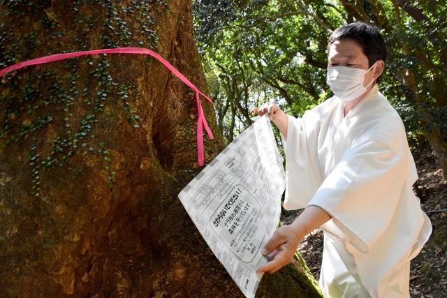 羽生選手も参拝 諭鶴羽(ゆづるは)神社周辺の原生林がピンチ 害虫対策へ協力募る