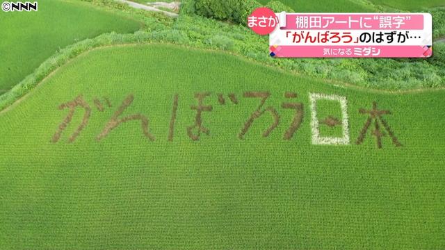 【画像】高知県本山町 棚田アート「マジで間違えてたみたい」「見に行く人増えそうw」